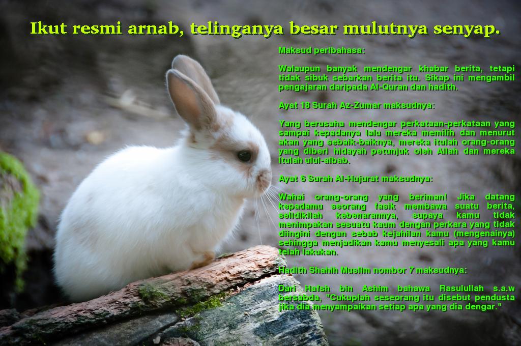 peribahasa-arnab